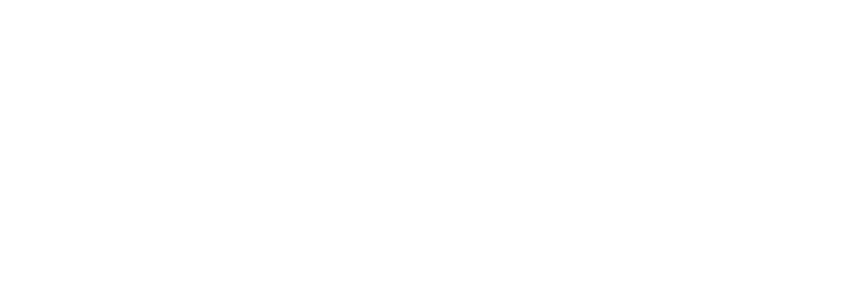 Donahoe & Young LLP
